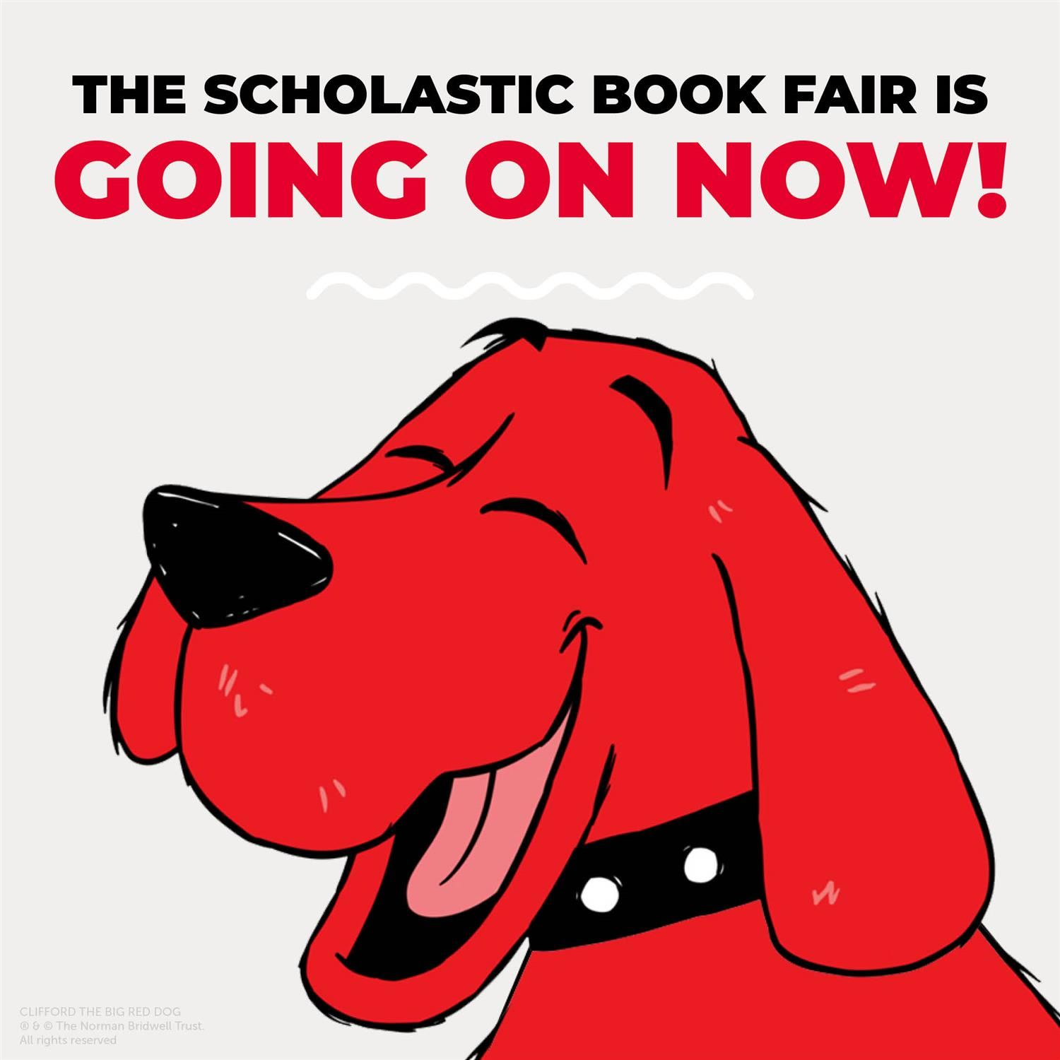 The book fair is going on now!